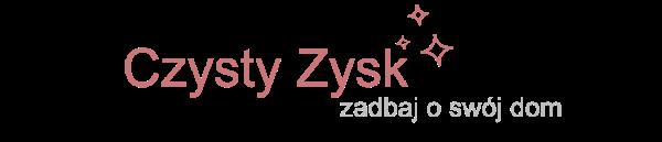 CzystyZysk - Panie Miotełka o sprzątaniu