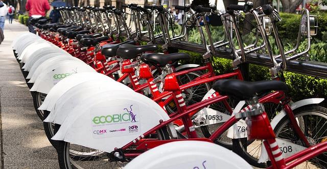 bycie eko - rower