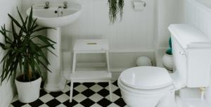 Rośliny łazienkowe - łazienka jasna
