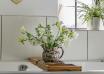 Rośliny łazienkowe - rośliny w łazience